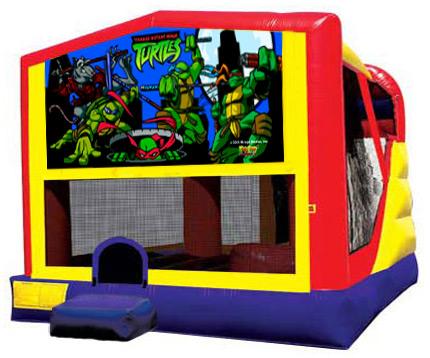 102 - Teenage Mutant Ninja Turtles