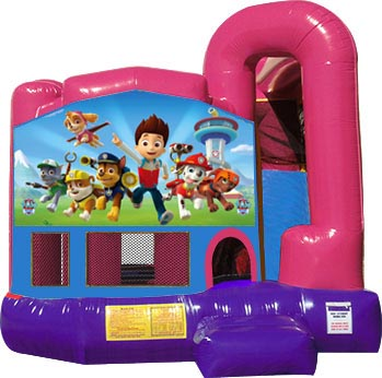 Backyard Dream Module 4 In 1 Combo w/Paw Patrol Banner