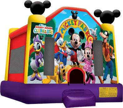 Small Mickey Park Jump